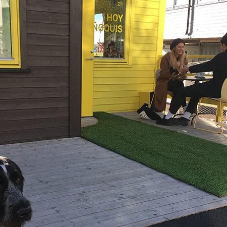 HOY ÑOQUIS at antipodes café DEG15